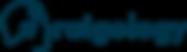 DEEP NAVY Website Logo.png