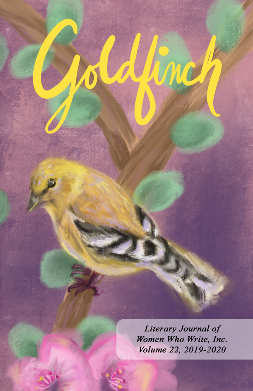 Goldfinch 22 Cover