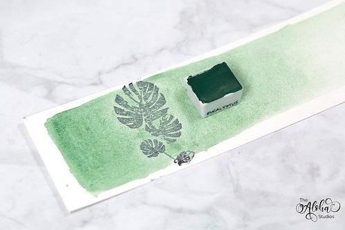 Eucalyptus / Nicosia green earth paint / natural honey-based watercolor / handma