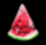 watermelon_logo2.png