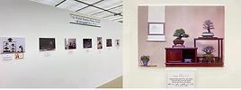 Gafu Ten exhibition.png