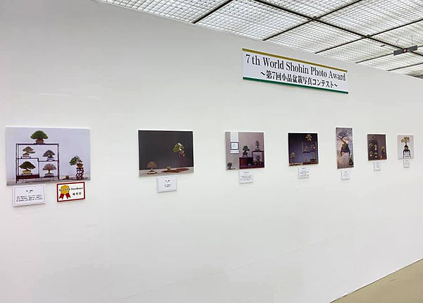Gafu Ten exhibition DISPLAY.jpg