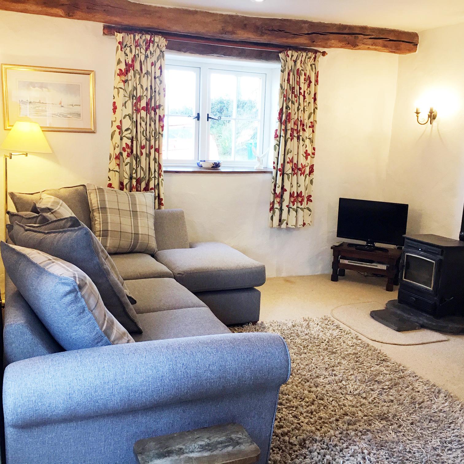 buzz sofa2