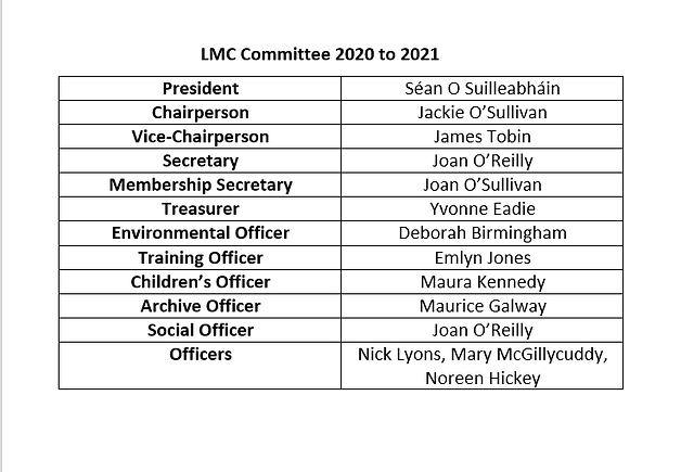 Committee 2020 to 2021.png