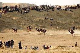 Things-to-do-in-Bikaner-sightseeing-tour-Rajasthan-tour-packages-Vedic-Walks.jpg