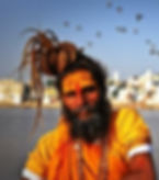 delhi-to-pushkar-tour-desert-camping-safari-ride-vedic-walks-travel-company-booking