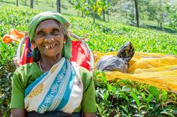 Active-Internationals-Travel-Sri Lanka-V