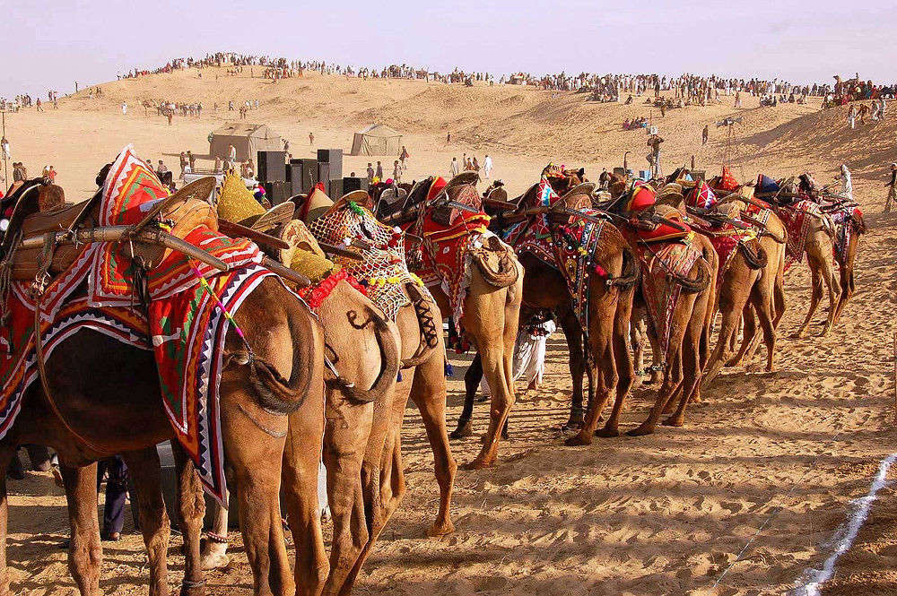 Vedic-Walks-Travel-Company-tour-operator-things-to-do-rajasthan-world-heritage-sites-India-UNESCO-tour-packages-Gagron-fort