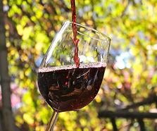 Wein Bild.jpg