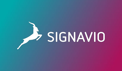 signavio-info-rectangle.jpg
