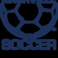 nash_soccer_ball2_NEW.png
