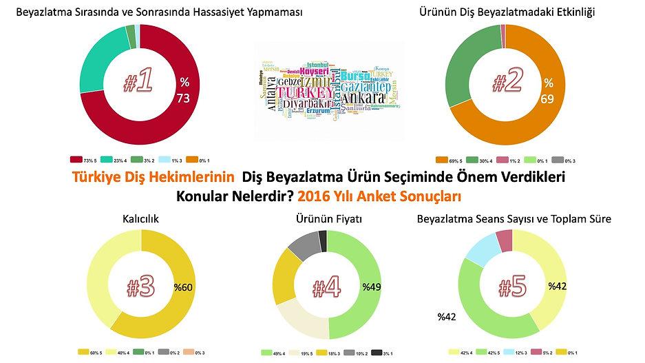 Beyazlatma Anketi 2016.jpg