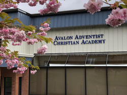 Avalon School Pic with Flowers