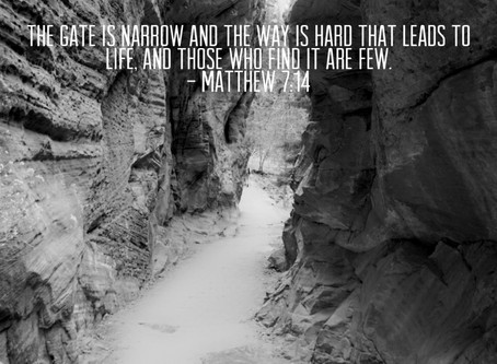 Enter in the Narrow Gate
