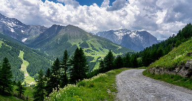 Wilderness Dash Ad Rolls_600x315_IMG ONL