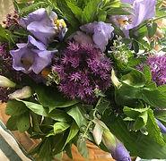 spring iris and alium.jpeg