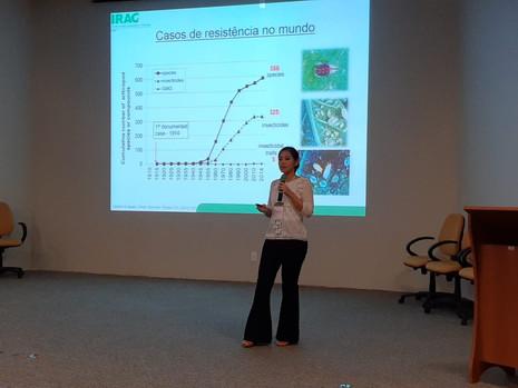 IRAC-BR fala sobre as consequências do cultivo de soja tardia/resistência a inseticidas no Workshop