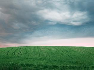 Mudanças climáticas podem interferir na resistência a inseticidas