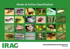 Classificação do modo de ação.PNG