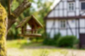 Zollhaus-Marketing Vogelhaus.jpg