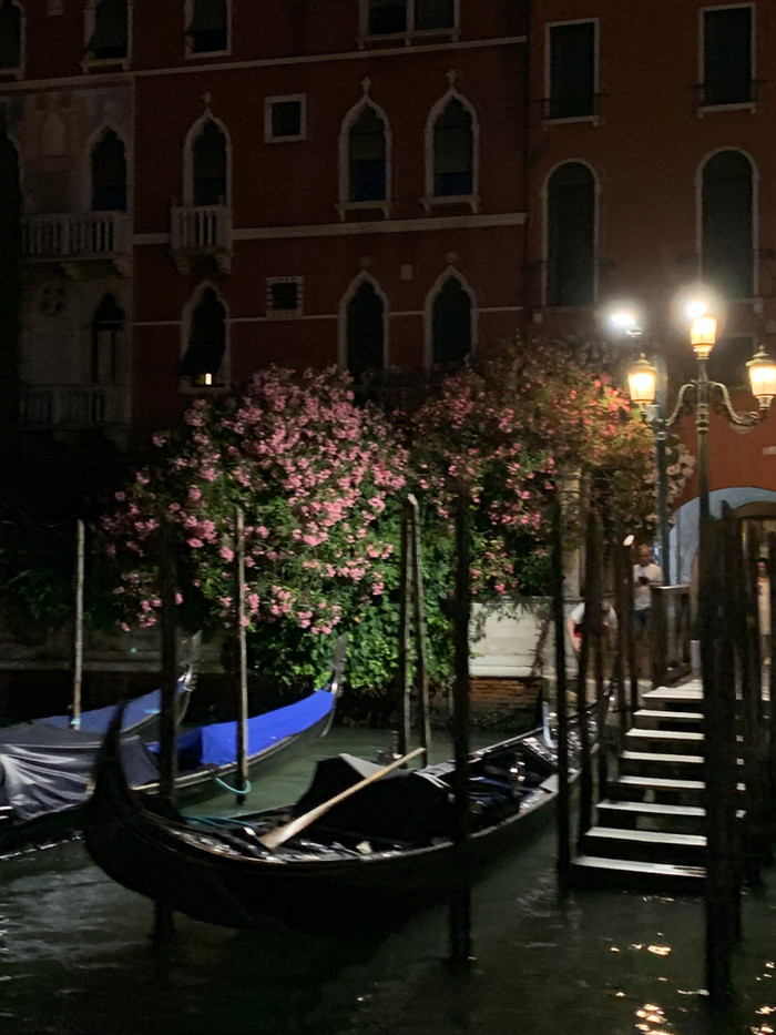 Venice is worth the effort