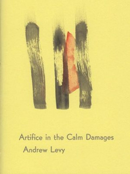 Artifice in the Calm Damages by Andrew Levy