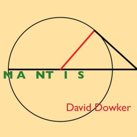 MANTIS, by David Dowker