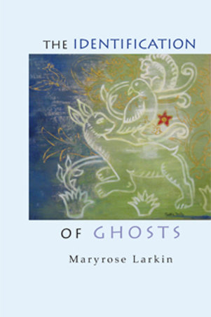 The Identification of Ghosts by Maryrose Larkin