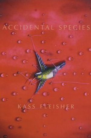 Accidental Species by Kass Fleisher