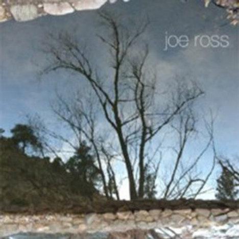 1000 Folds by Joe Ross
