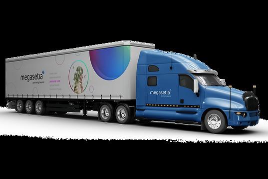 Megasetia_ID_fleet_truck_mockup copy.png