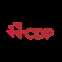 Megasetia_sertificate_logo_CDP.png