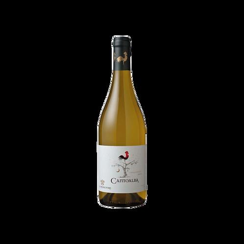 Cantoalba Reserva - Chardonnay