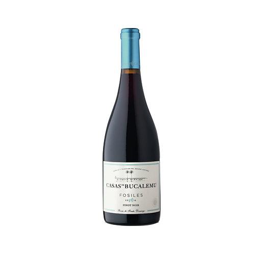Bucalemu Fosil - Pinot Noir