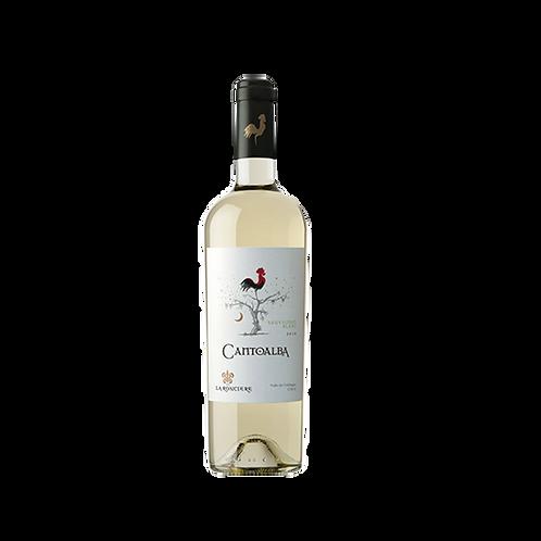 Cantoalba Reserva - Sauvignon Blanc