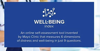 Wellbeing index.JPG
