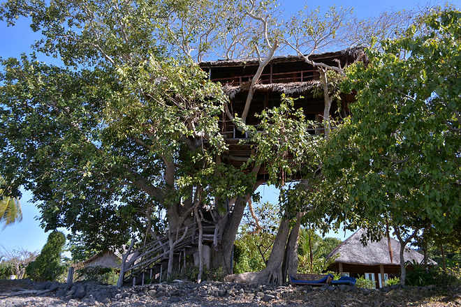 TREE HOUSE EXTERIEUR.jpg