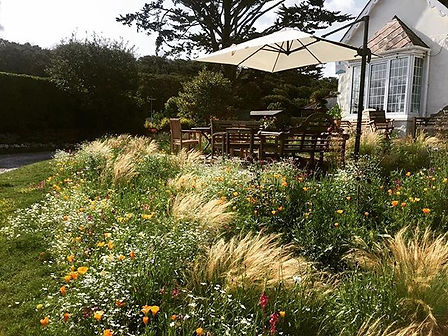 Here is a designed meadow I created for
