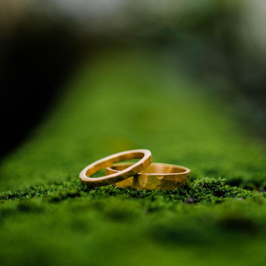 RIPA | Aliança Rochedo em Ouro