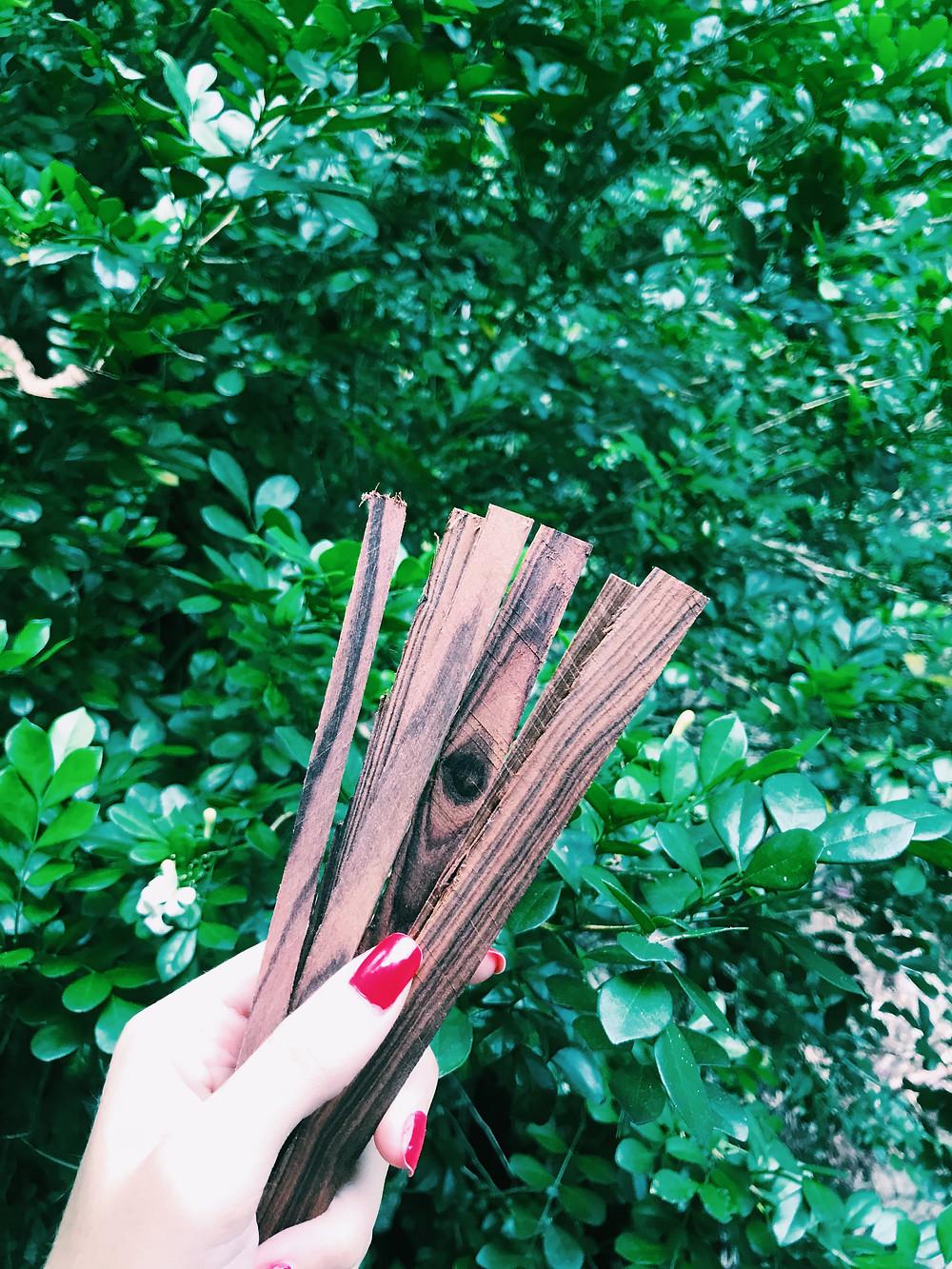 Jacarandá Violeta - Restos que Ganhamos da Casa na Árvore
