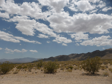 Driving the Mojave (with Fallout New Vegas as my guide)