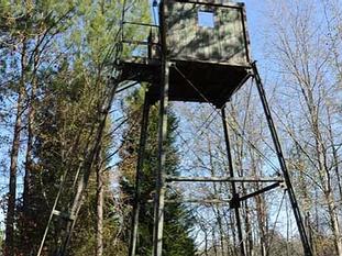 Pheasant Tower.webp