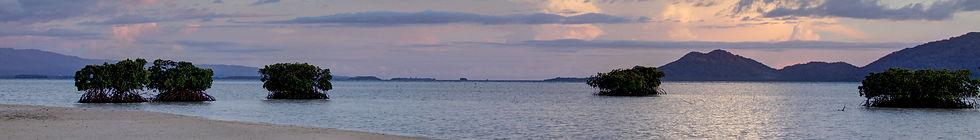 Bougainville_banner_White_Island.jpg