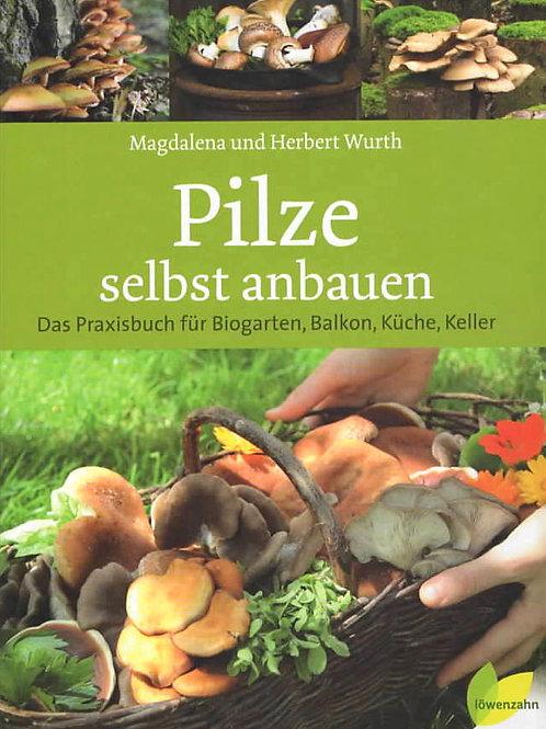 BUCH: Pilze selbst anbauen