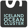 crop.Icealand Ocean Cluster.png.small.40