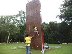 Pared de escalar