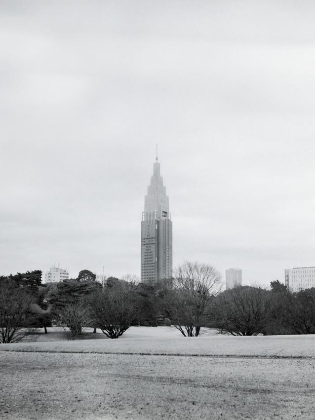 Two Views (South)