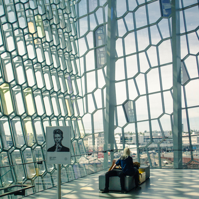 Harpa and Bowie