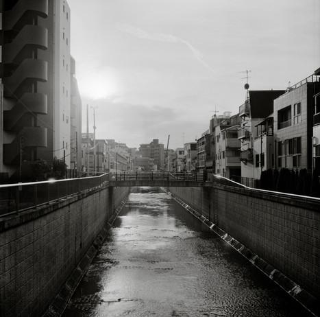 Last Bridge In Tokyo
