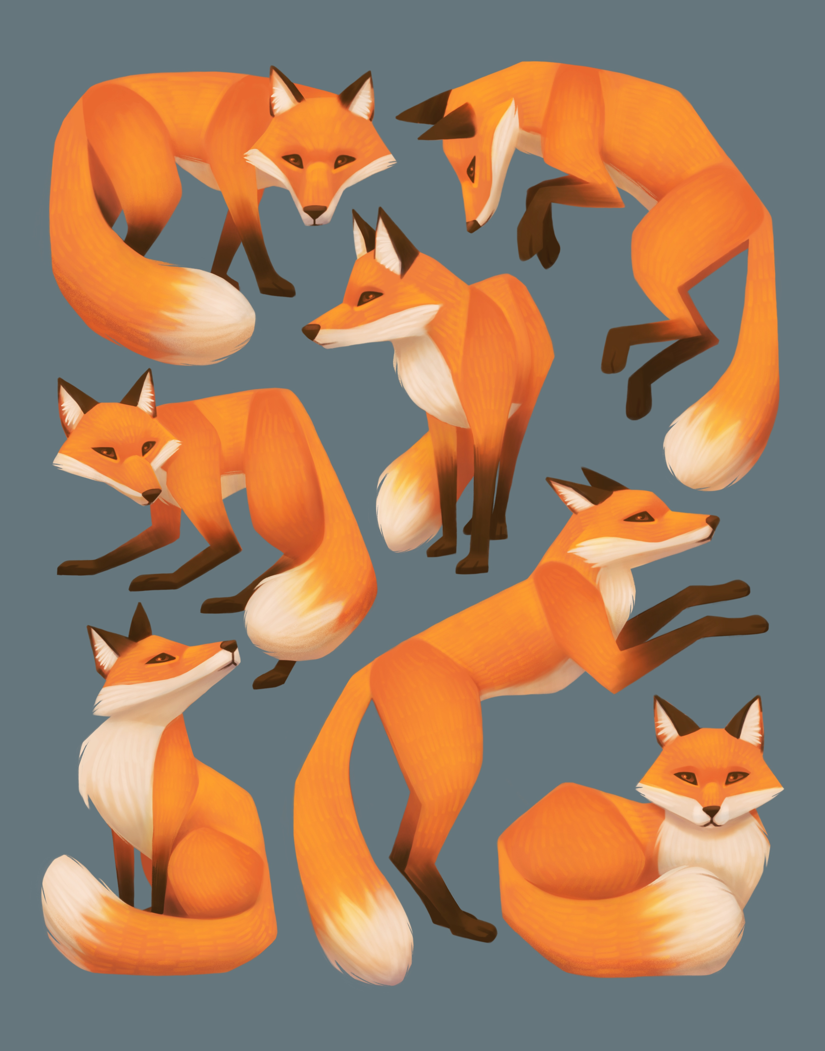 Seven Foxes